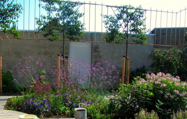 Kleine tuinen u ina boot tuinontwerpbureau